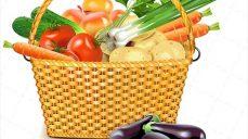 وکتور لایه باز سبد میوه و سبزیجات