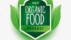 لوگو لایه باز محصولات اورگانیک